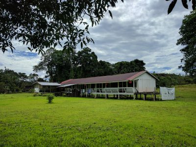 5 x Best accommodations to stay at Gunung Mulu National Park