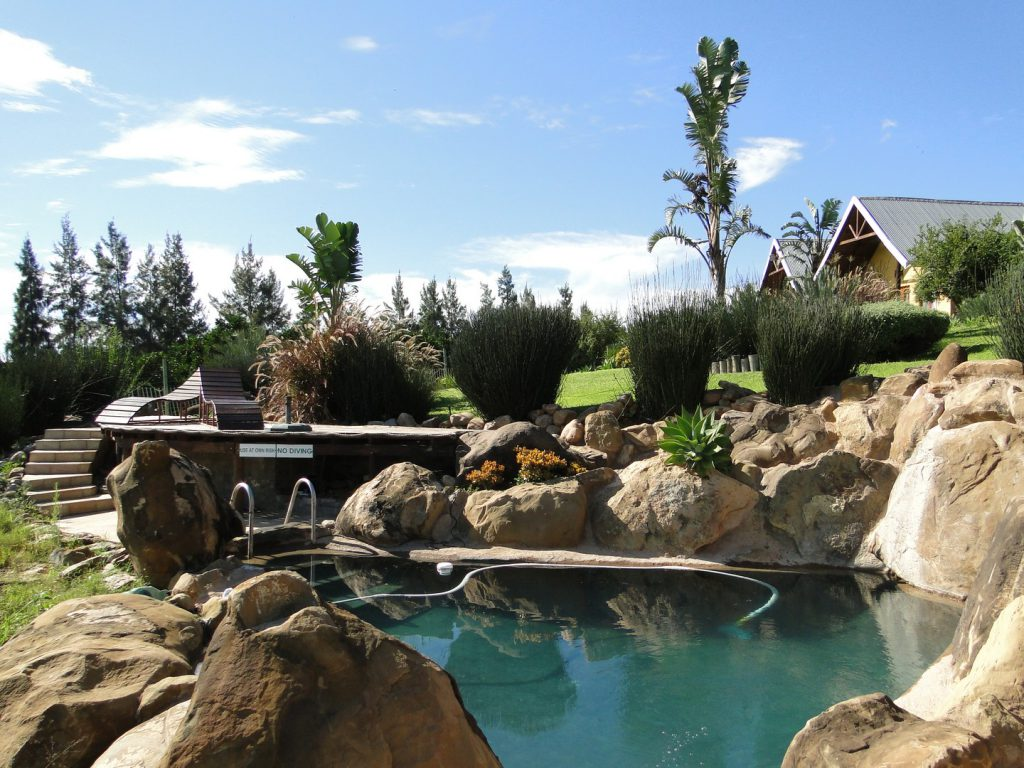 Swimming pool Addo Dung Beetle Guest Farm South Africa