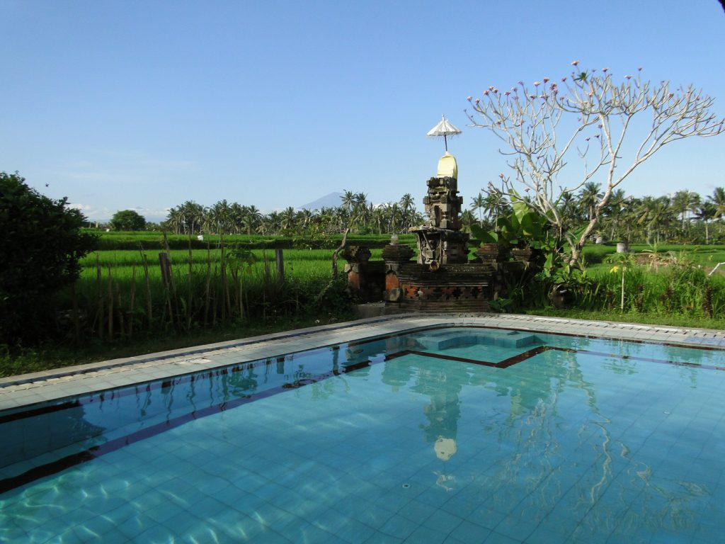 Swimming pool amongst rice fields Suly Resort Ubud Bali