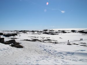 Trails covered in snow at Dettifoss waterfall