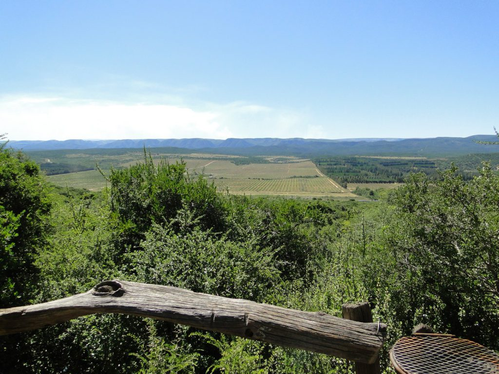 View on the citrus fields from the veranda Addo Dung Beetle Guest Farm South Africa