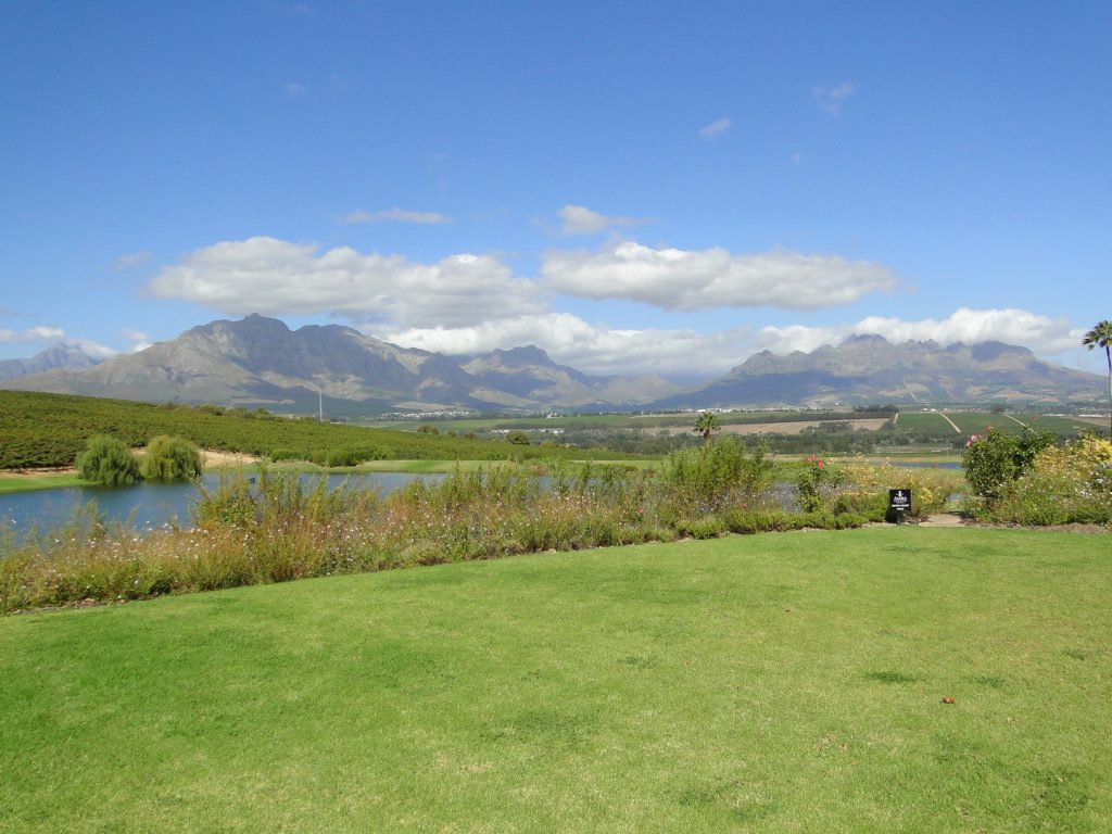 Vineyards and mountains Stellenbosch South Africa