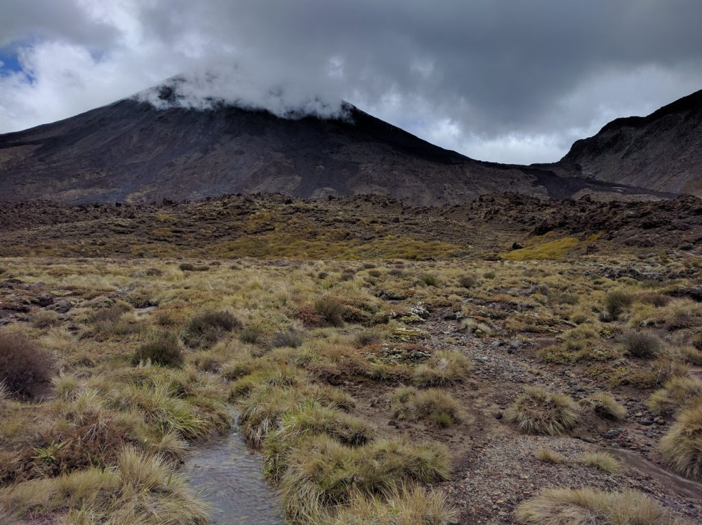 View of moss-covered lava flows and Mt. Ngauruhoe Tongariro Alpine Crossing New Zealand