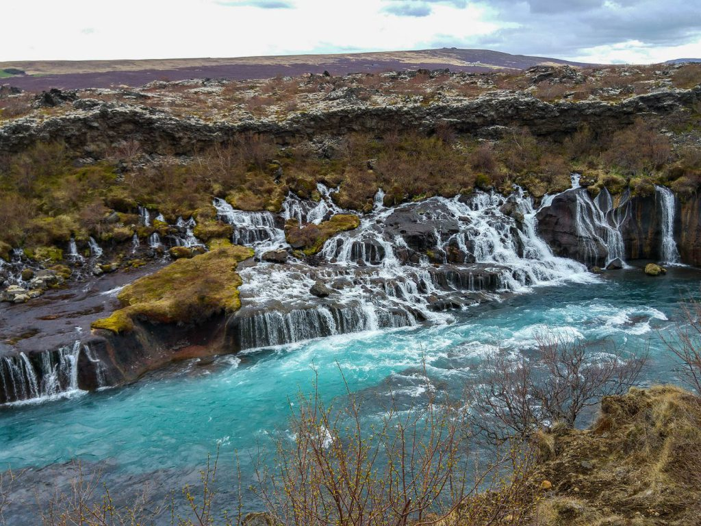 Water Hraunfossar flows into the river from Hallmundarhraun lava field