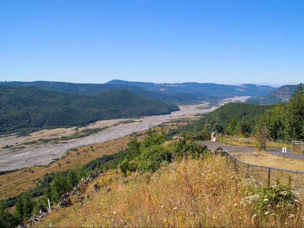 view from viewpoint at landscape Toutle river and forest Mount St Helens